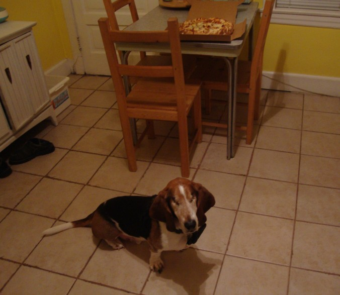 Mission accomplished! The Pizza Hound poses proudly before one his newly discovered treasures!