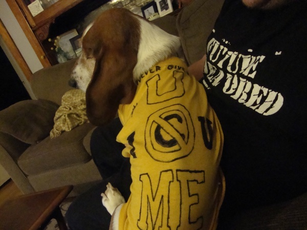 Ernie in his John Cena t-shirt.