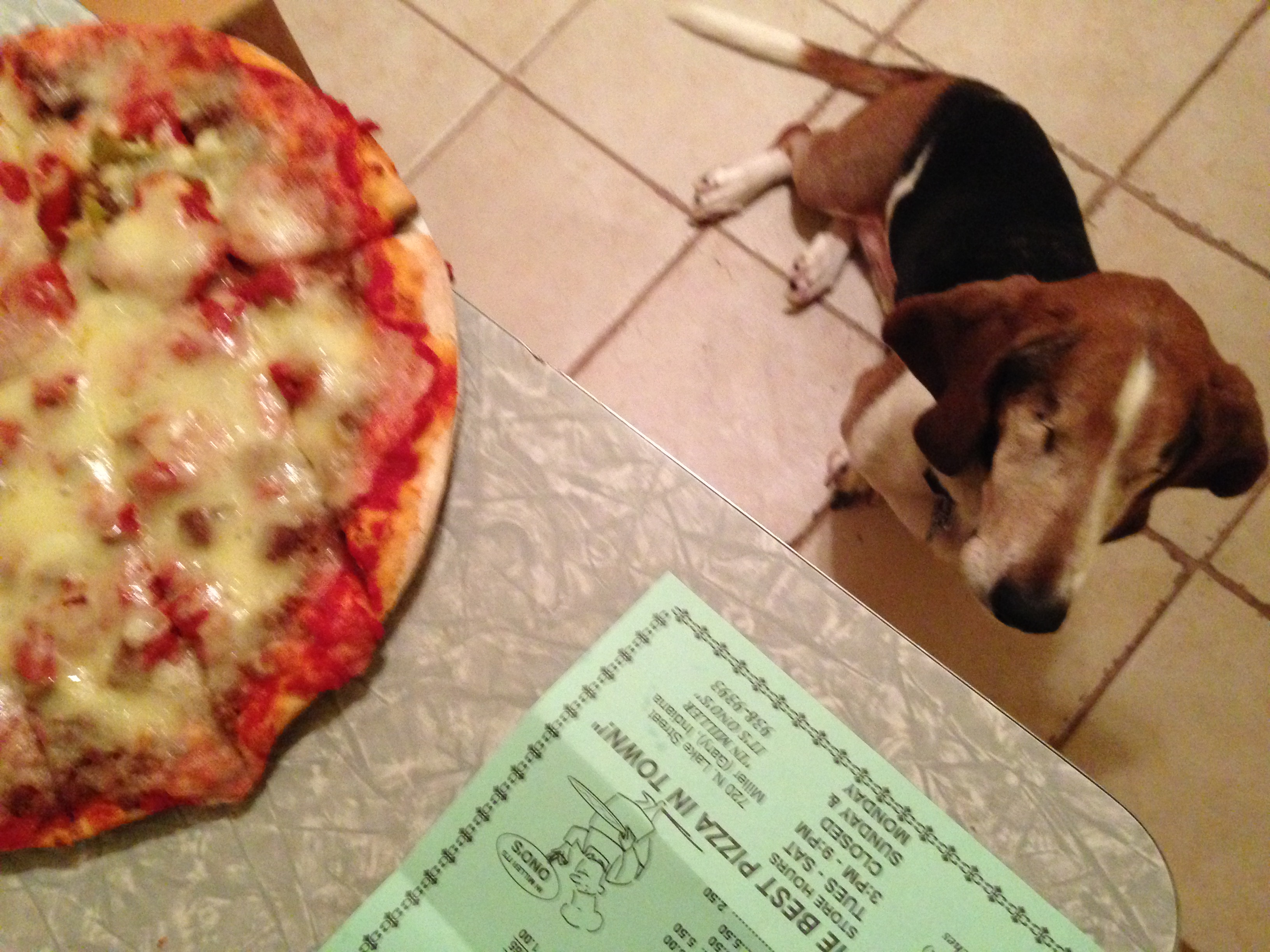 Ernie and a Pizza from Ono's - Miller Beach, Gary, Indiana