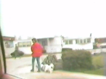 1981:Hegewisch stuff complete with bad edits, uploaded by nnneptune. https://www.youtube.com/watch?v=MOFVSxUxu_M