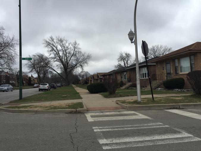 Homes on Avenue O, East Side, Chicago